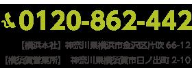 TEL:0120-862-442